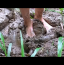 [Image: Muddy Feet HD]